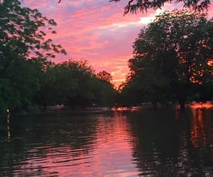 sunset, pink, and trees image