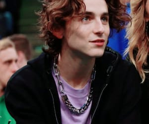 handsome and timothee chalamet image