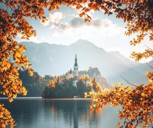 autumn, nature, and travel image