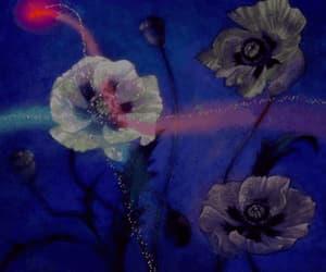 disney, sugar plum fairies, and fantasia image