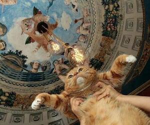 cat, animal, and art image