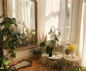 plants, mirror, and aesthetic image