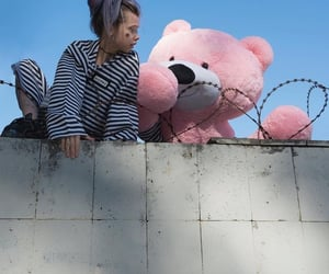 aesthetic, anime, and bear image