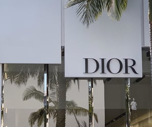 dior, aesthetic, and brands image