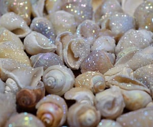 shell, mermaid, and theme image