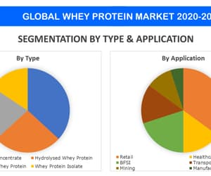 whey protein market and whey protein market price image