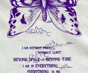 butterfly, print, and purple image