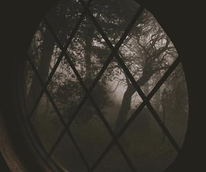 window, dark, and fall image
