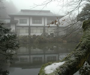 nature, pale, and japan image