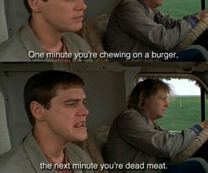 carrey, hair style, and dumb and dumber image