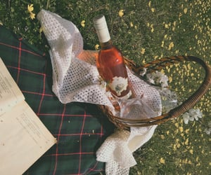 books, nature, and picnic image