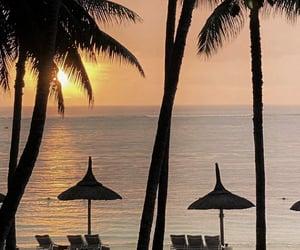 beach, mauritius, and palmtrees image