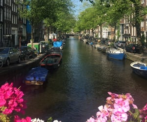 holland, amsterdam, and tb image
