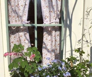 flowers, cottage, and aesthetic image