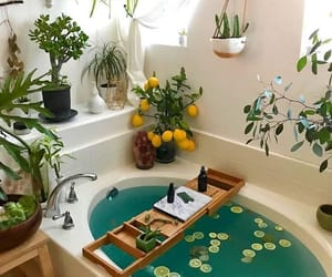 bathroom, aesthetic, and plants image
