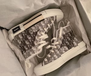 sneakers, aesthetic, and Christian Dior image