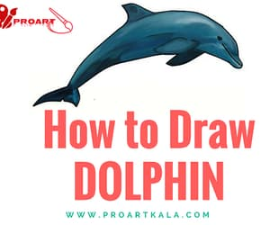 dolphin, drawing, and cute dolphin image