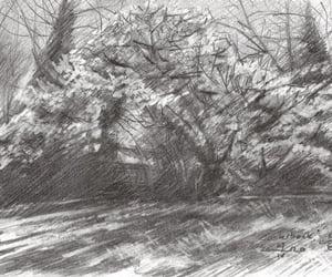 crayon, drawing, and dutch image