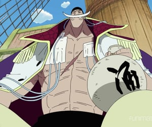 one piece, luffy, and one piece anime image