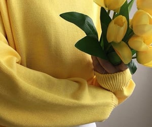 aesthetic, yellow, and fashion image