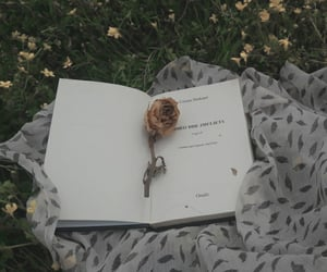 art, books, and juliet image