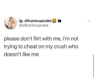cheat, crush, and flirt image