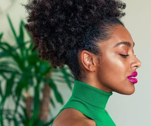 Afro, big hair, and black women image