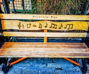 bench, music, and wood image