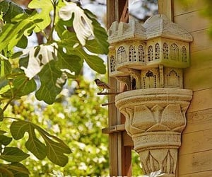 bird house, turkiye, and mugla image
