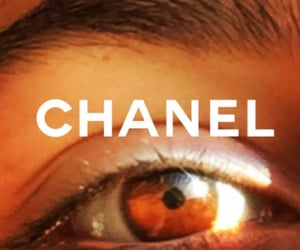 brand, chanel, and rich image
