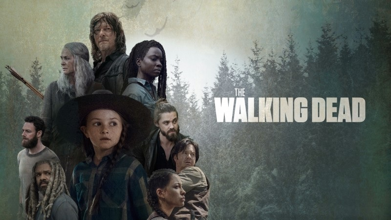 article, rick grimes, and michonne image