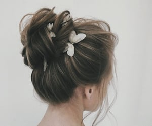 hair, butterfly, and updo image