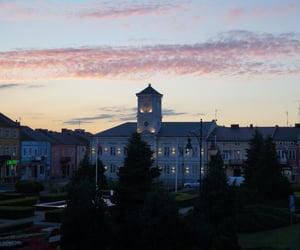 city hall, evening, and summer image