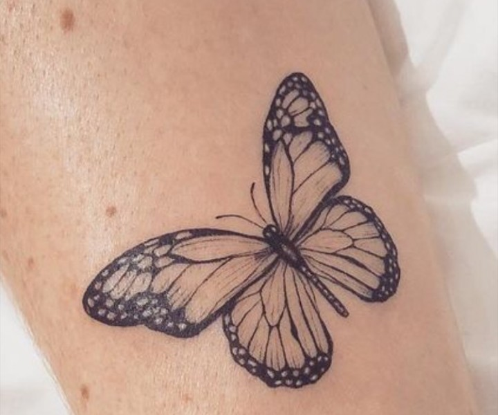butterfly, effect, and tatto image