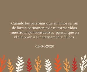 feelings, words, and frases image