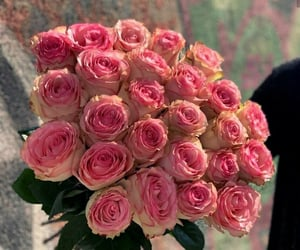 roses, weheartit, and love image