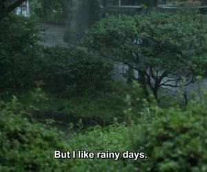 rain, quotes, and green image