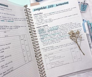 notes, study, and study notes image