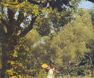 tree, guitar, and nature image