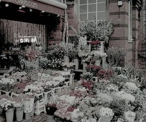 theme, kpop, and psd image