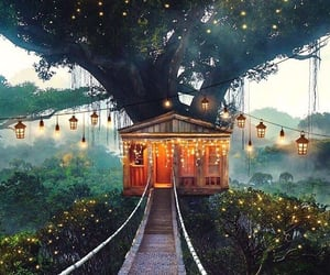 light, house, and tree image
