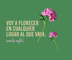 frases, quotes, and seguridad image