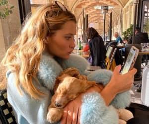 blue, dog, and fashion image