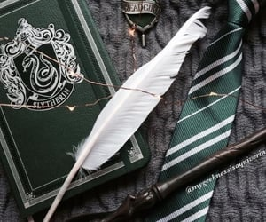 aesthetic, potter, and voldemort image