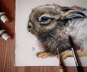 illustration, rabbit, and saga mariah image