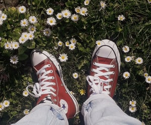 aesthetic, all star, and converse image