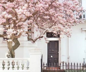 london, pink, and house image