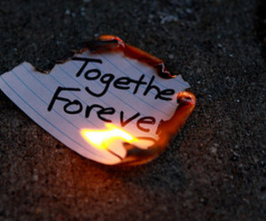 forever, together, and fire image