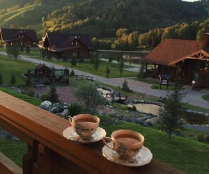 nature, tea, and view image