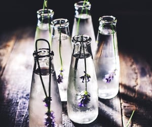 bottle, lavender, and infused water image